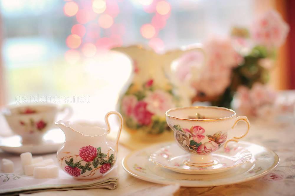 Традиції чаювання в Англії