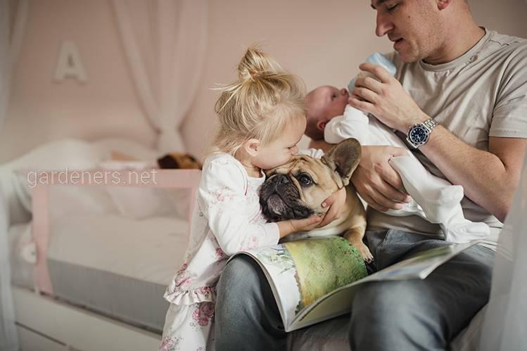 Породы собак для семьи с детьми!