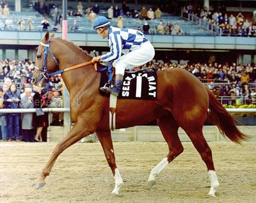 Конь по кличке Secretariat