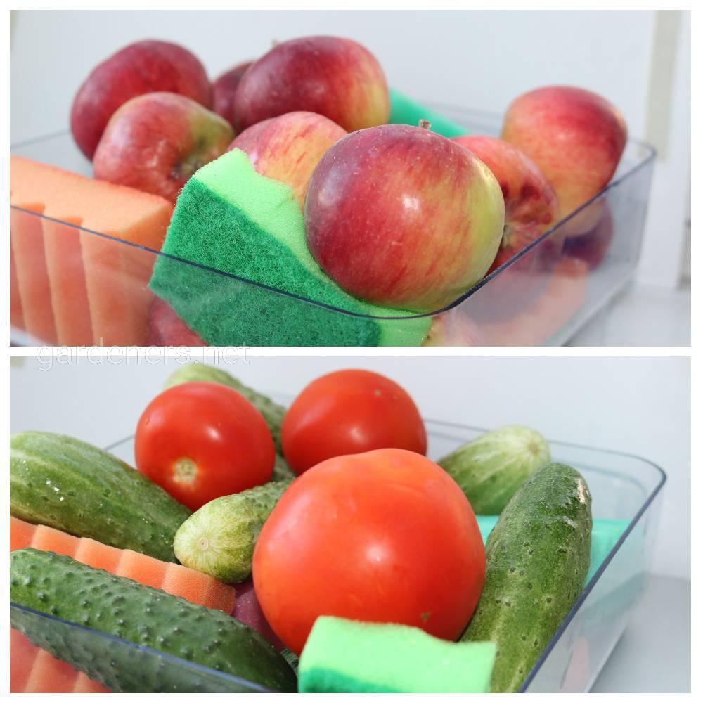 """""""Приспособление"""" для сохранения свежести овощей"""