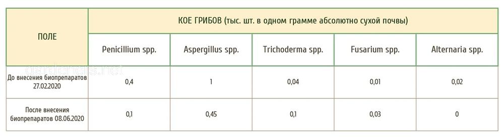 микологический анализ почвенных образцов