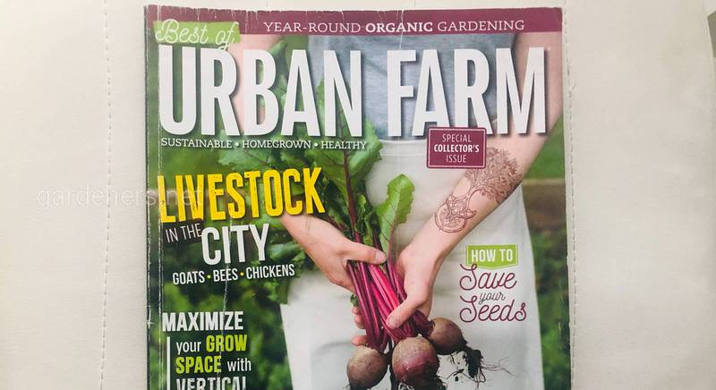Журнал URBAN FARM