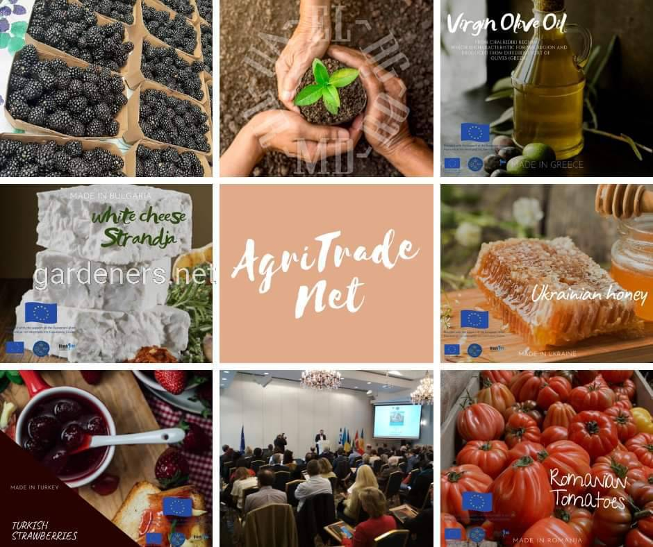 Міжнародна агровиставка в Одесі для усіх