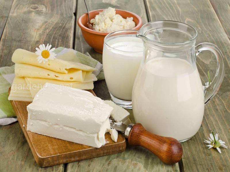 Сироватка - природний засіб для печінки! Застосування сироватки в кулінарії!