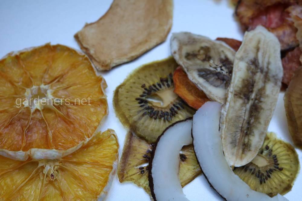 сушка овощей и фруктов с помощью бытовой сушилки