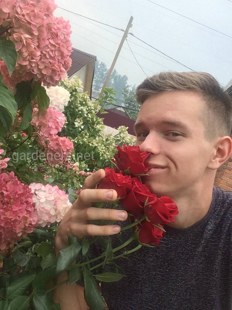 Илья Колмогоров
