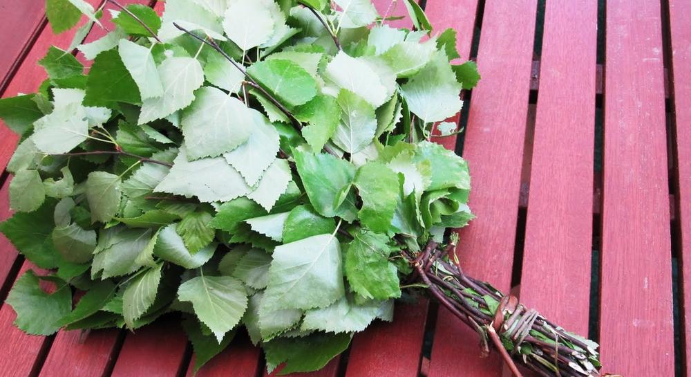 Свойства веников для бани. Дубовые веники, березовые веники и веники из других растений