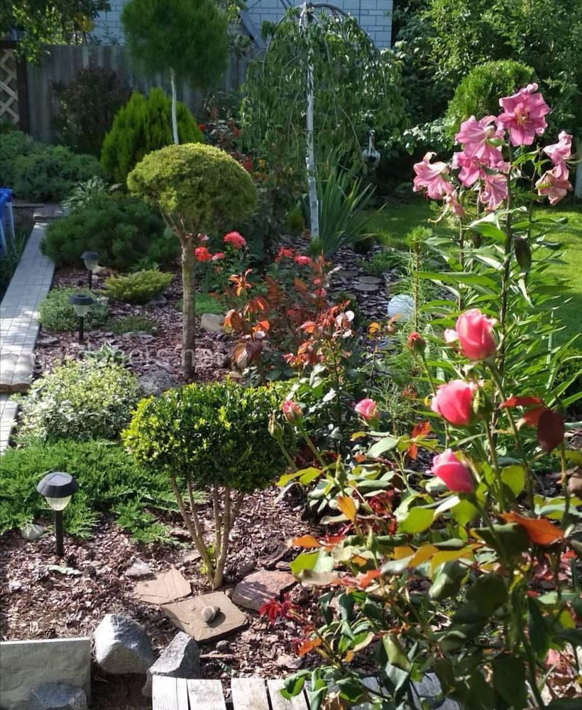 Добро пожаловать в Маринин сад
