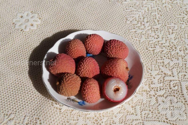 Лічі, опис фрукта