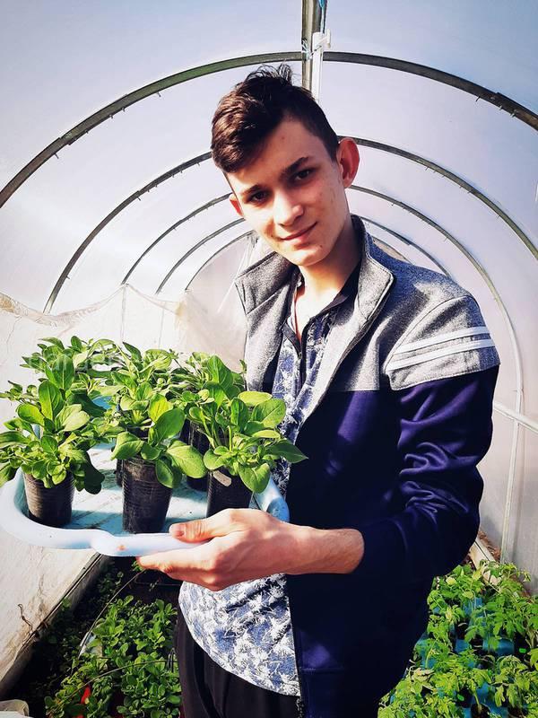 Загородная жизнь