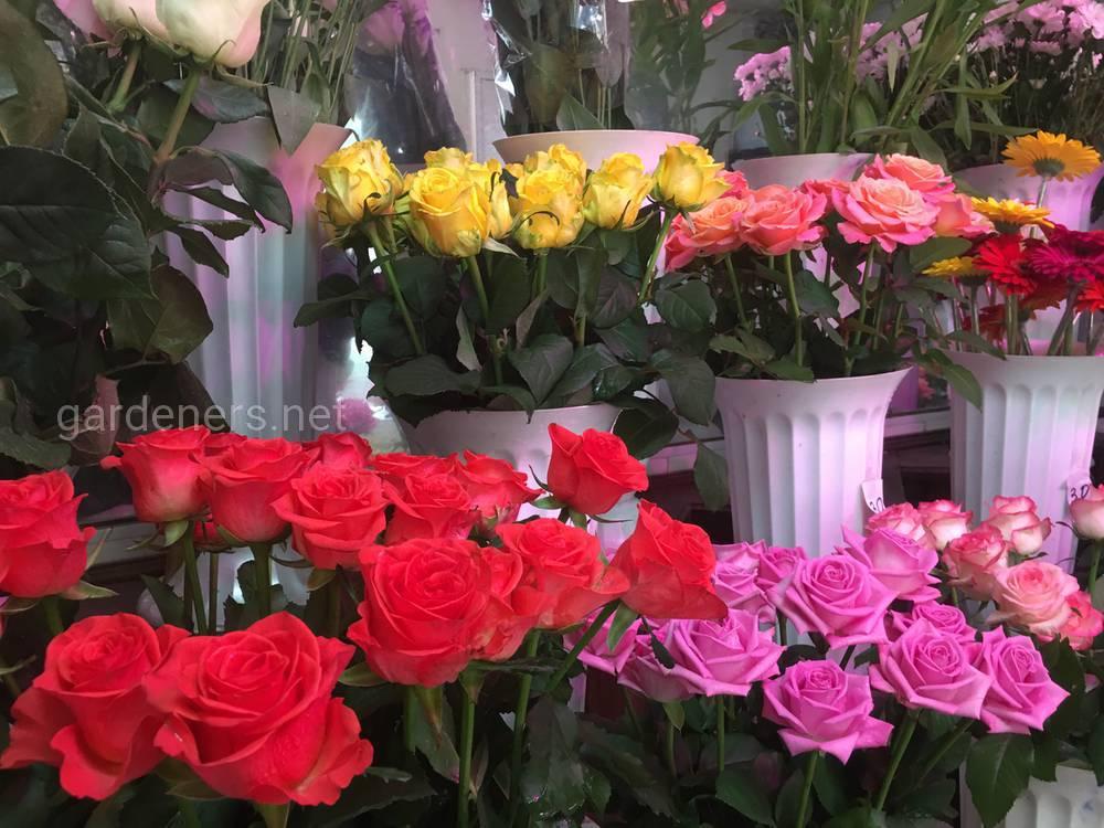 Цветочный магазин Глория 3