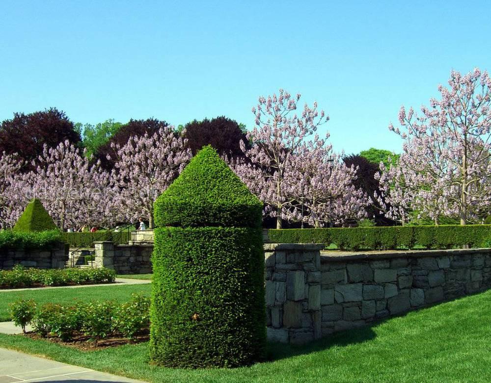 Серебряный сад