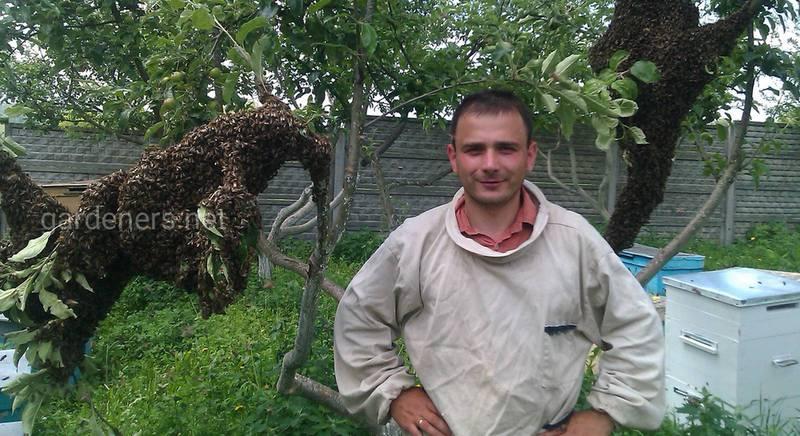 Интересное интервью о секретах пчеловодов от семейной пасеки Яценко!