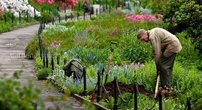 работа на огороде.jpg