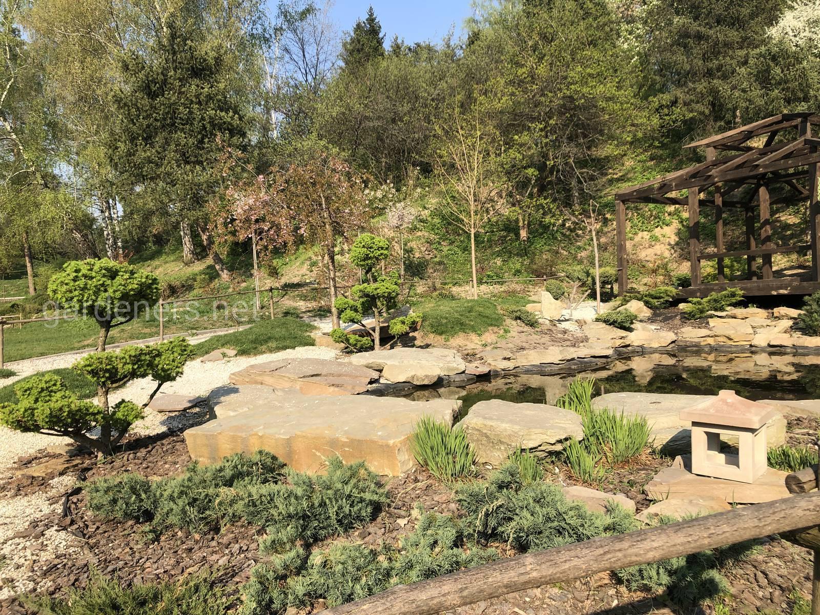 Японские мотивы. Ботанический сад им Гришка