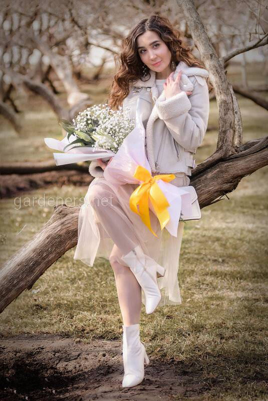 Самые красивые цветы на 8 марта и другие праздники и их символика