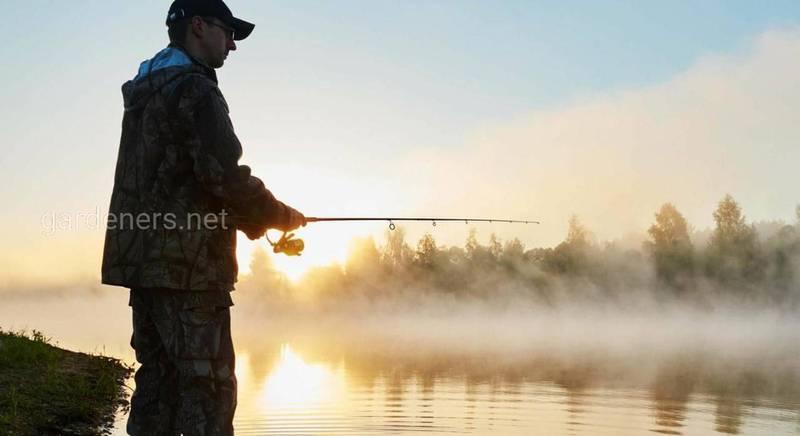 Як вибрати місце для риболовлі