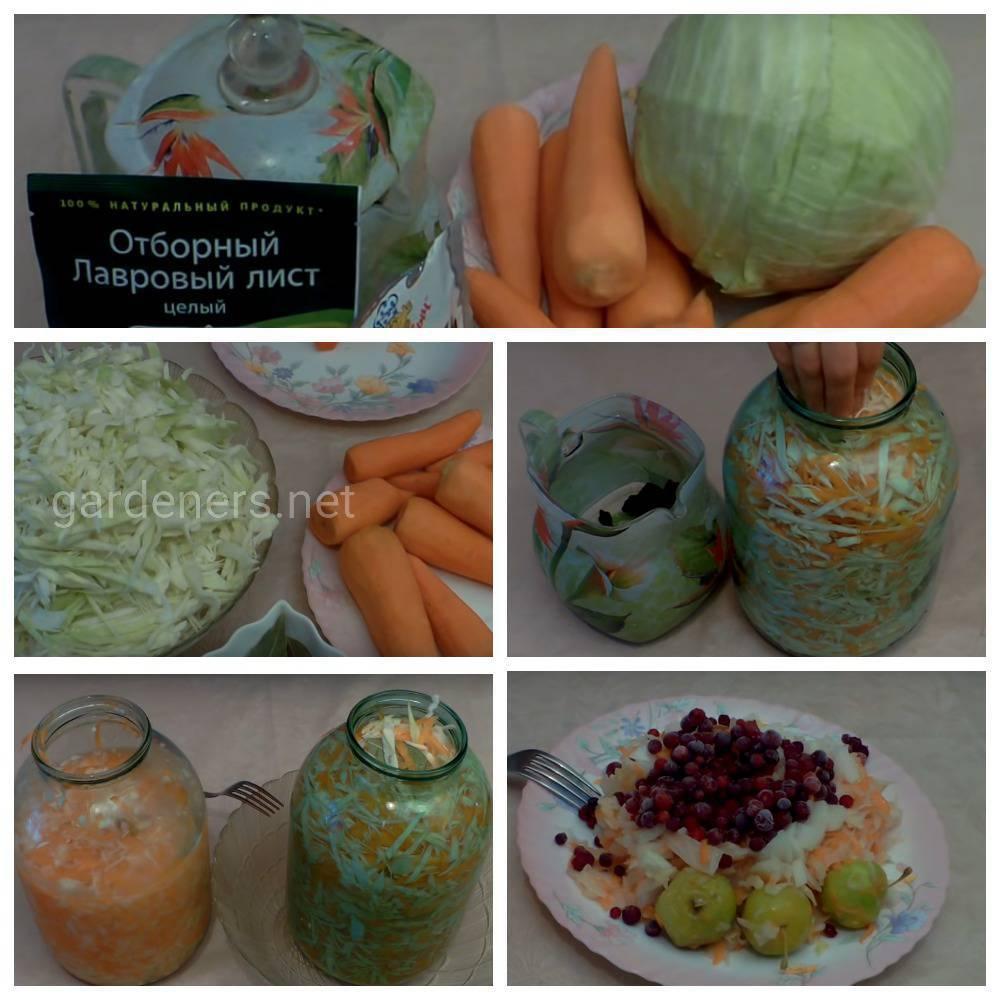 Бессолевой рецепт квашеной капусты