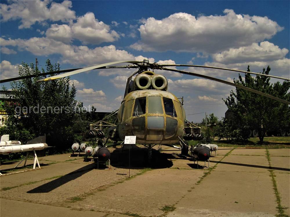 Музей в Украине