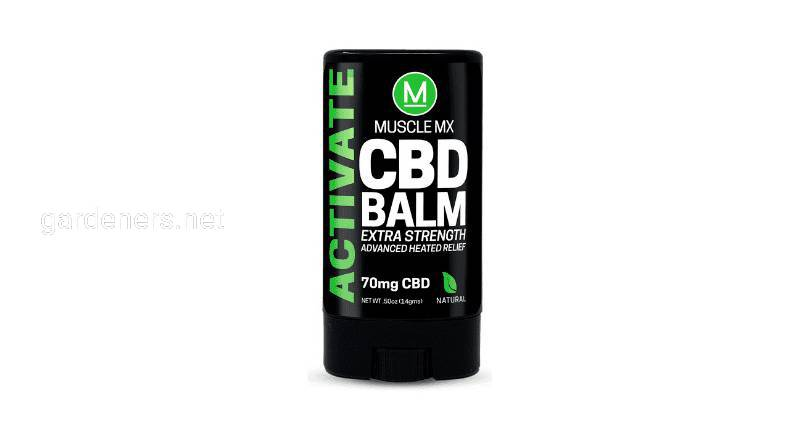 Muscle MX BALM ACTIVATE CBD MINI 15 мл (ACM)