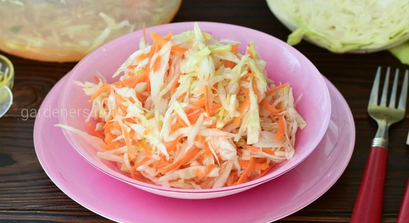 Учимся квасить овощи: основные правила квашения и рецепт вкусной турши