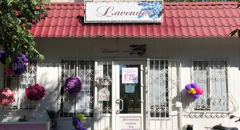 Самый уютный цветочный магазин Lavender в Новой Каховке