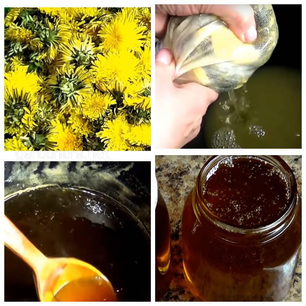 Традиционный одуванчиковый мед