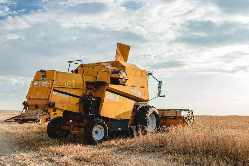 Чому важливий аналіз ґрунту після збору врожаю?