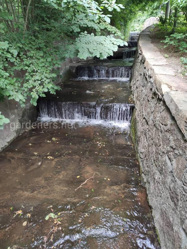 Водоем (пруд)