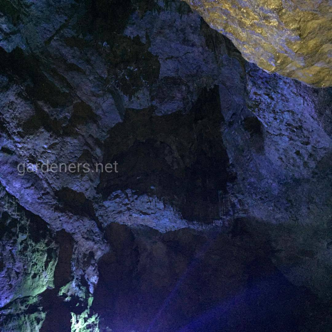 Bacho Kiro cave, Болгария