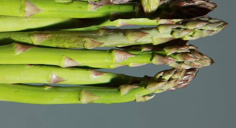 green-asparagus-1331460_1920.jpg