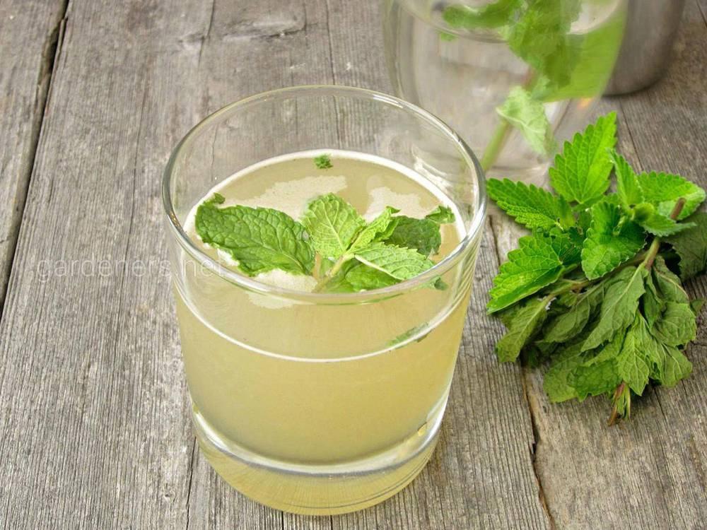 Рецепт безалкогольного мохіто