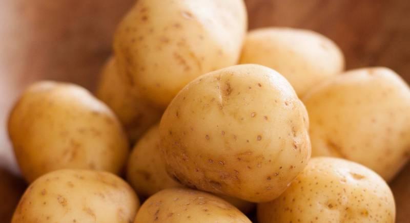 Знакомство с картофельным соком
