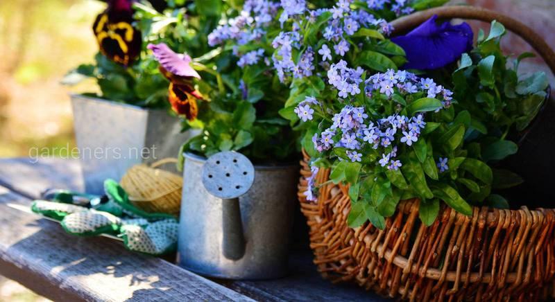 ТОП-15 садово-огороднических мифов