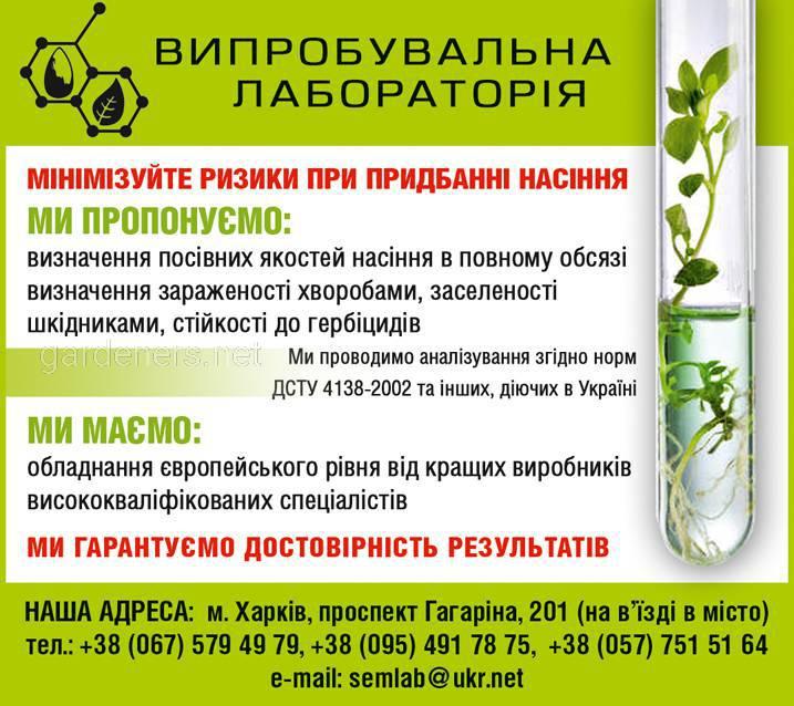 реклама лаборатории