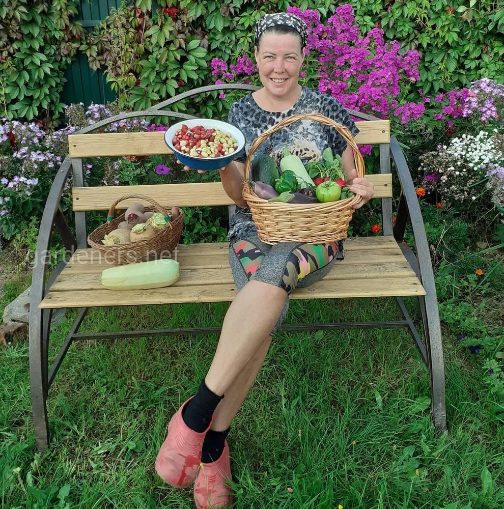 Тестирую семена различных агрохолдингов
