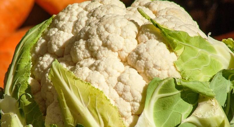 Топ-10 сортов цветной капусты: ранние, среднеспелые, поздние