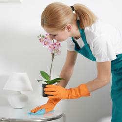 fim-cleaning.com.ua