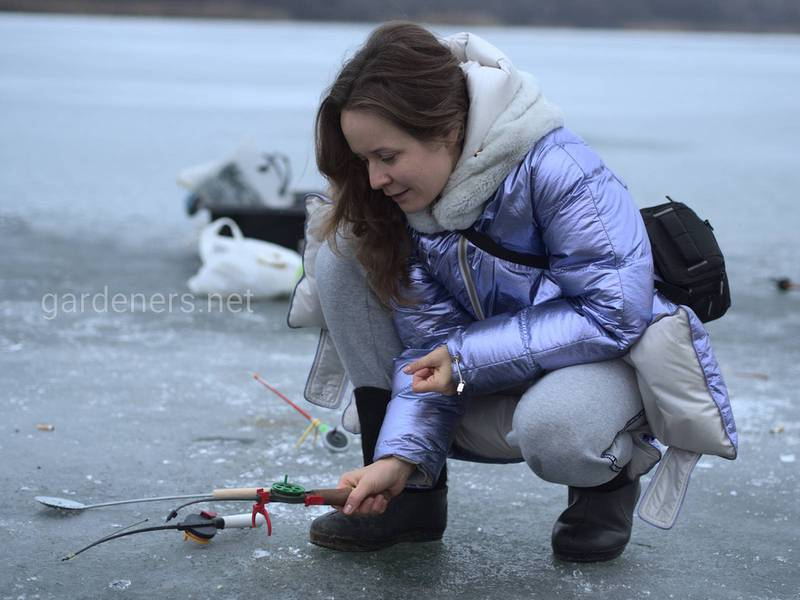 Активатор клева во время зимней рыбалки