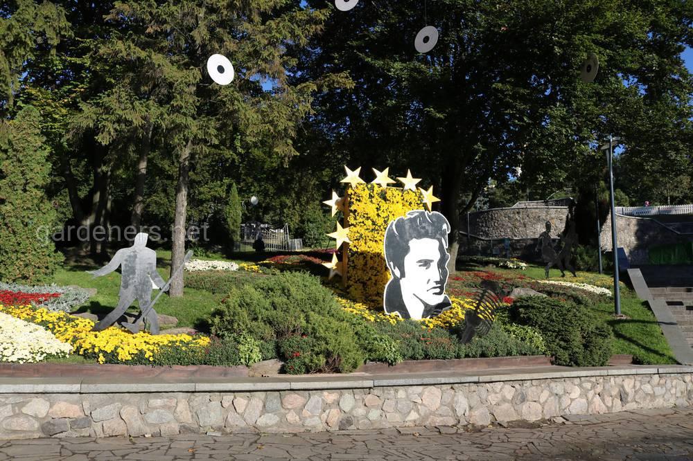 Киев выставка хризантем