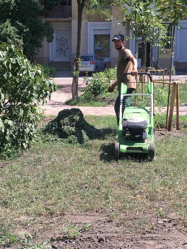 Коли та як краще орати рослинні залишки після збору врожаю?
