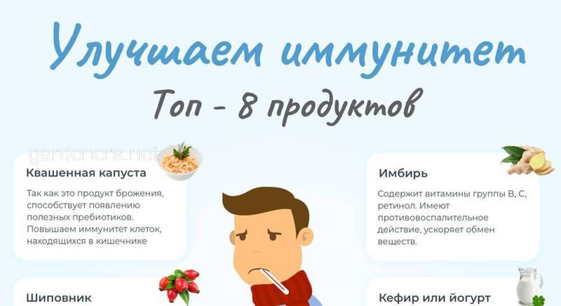 ТОП-8 продуктов для иммунитета