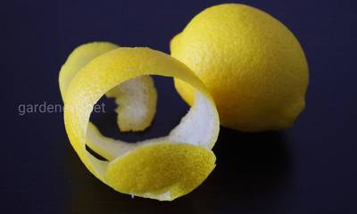 цедра лимона от кашля.jpg