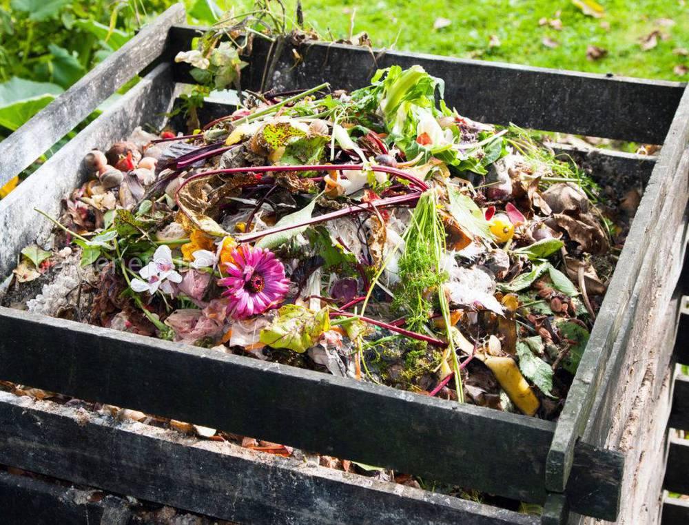 Переробка органіки