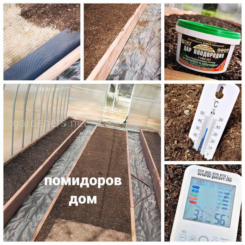 Подготовка к выращиванию томатовy в теплице(1)