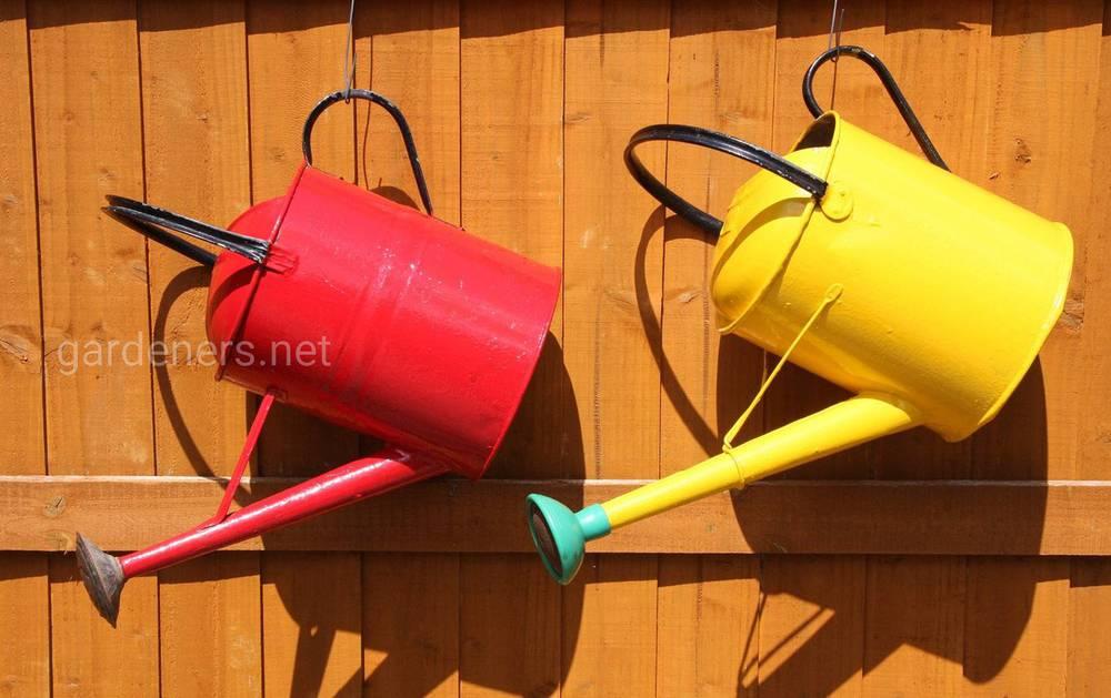 ТОП-25 советов для правильного полива растений в саду