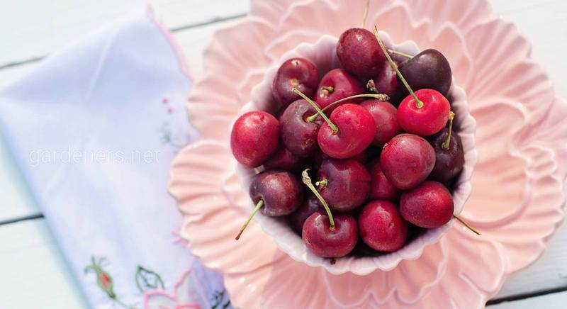 вишневые десерты