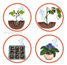Для яких рослин використовувати