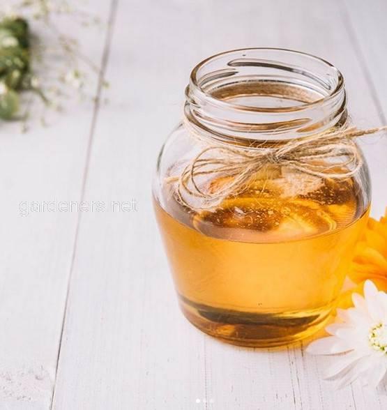 Гірський мед