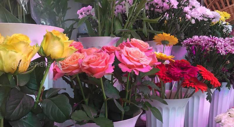 Цветочный магазин Глория 2.JPG